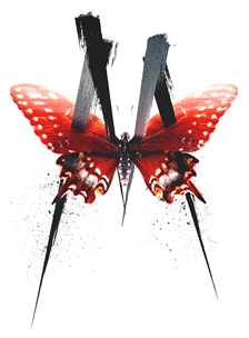 M. Butterfly | Show Poster Dimensions.png
