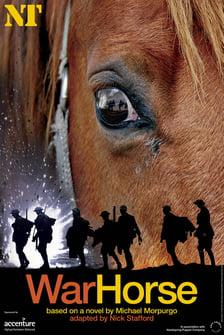 War Horse .jpg